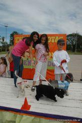 expo-mascotas-2009-237