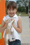expo-mascotas-2009-245