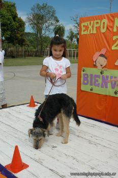 expo-mascotas-2009-253