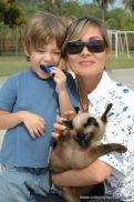 expo-mascotas-2009-262