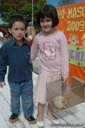 expo-mascotas-2009-263