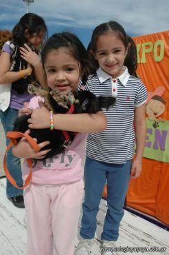 expo-mascotas-2009-268
