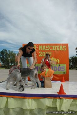 expo-mascotas-2009-290