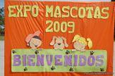 expo-mascotas-2009-311