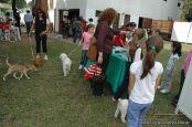 expo-mascotas-2009-334