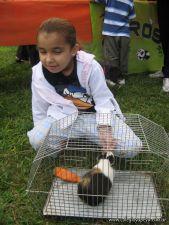 expo-mascotas-2009-55