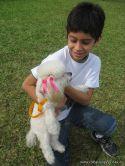 expo-mascotas-2009-59