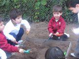 Día de Campo en el Jardín 2