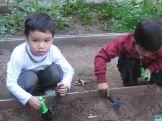 Día de Campo en el Jardín 4