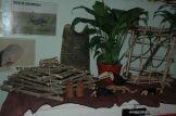 Expo Primaria 2009 42