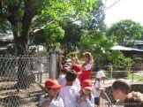 Visita al Zoologico 38