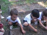 Jardin en la Huerta 1