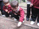 Jardin en la Huerta 107