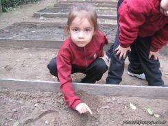 Jardin en la Huerta 117