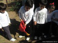 Jardin en la Huerta 162
