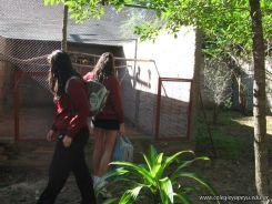 Corrientes Loro Park 32