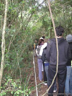Viaje a los Esteros del Ibera 2010 42