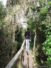 Viaje a los Esteros del Ibera 2010 53