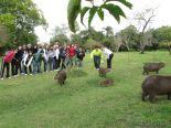 Viaje a los Esteros del Ibera 2010 64