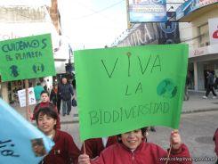 Manifestacion Medio Ambiente 11