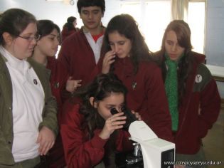 Visita Microbiologia 10
