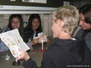 Actividades de la Semana de Excelencia 3er Bim 2010 6