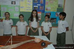Expo Yapeyu Primaria 2010 43