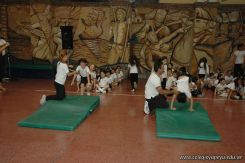 Muestra de Educacion Fisica 108
