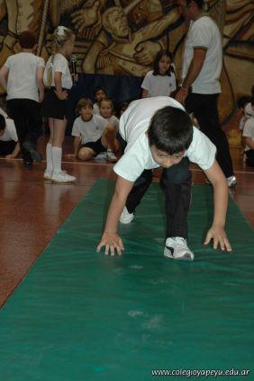 Muestra de Educacion Fisica 258