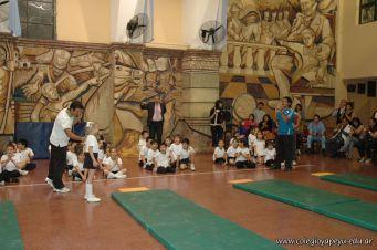 Muestra de Educacion Fisica 269