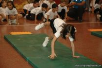 Muestra de Educacion Fisica 273