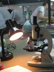 3ro en el Laboratorio 1