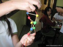 Estructura Espacial del ADN 16