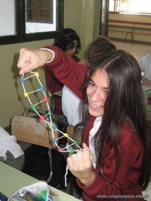 Estructura Espacial del ADN 27