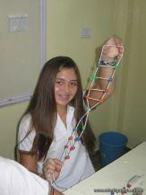 Estructura Espacial del ADN 29