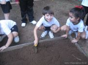 Jardin de 5 en la Huerta 16