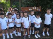 Jardin de 5 en la Huerta 17
