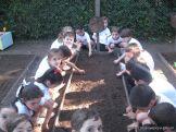 Jardin de 5 en la Huerta 40