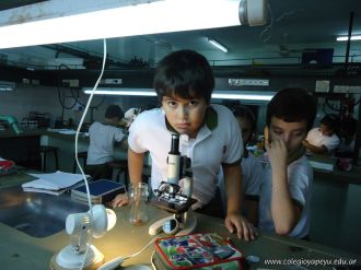Observacion en Microscopio 12
