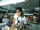 Observacion en Microscopio 14
