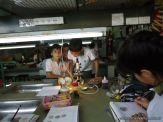 Observacion en Microscopio 6