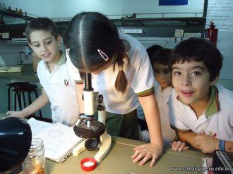 Observacion en Microscopio 9