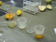 Presencia de Vitamina C 13