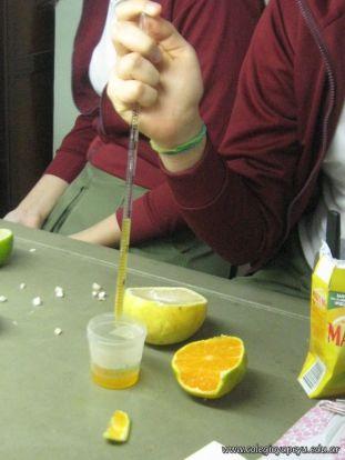Presencia de Vitamina C 16