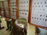 Visita al Museo de Ciencias Naturales 24