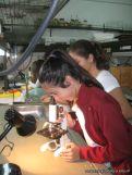 Observando por el Microscopio 2
