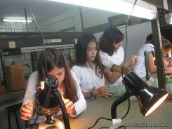 Observando por el Microscopio 21