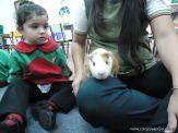 Preparativos y Festejos por el Dia del Animal 60