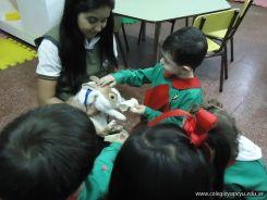 Preparativos y Festejos por el Dia del Animal 76