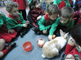 Preparativos y Festejos por el Dia del Animal 81